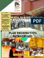 Plan Prospectivo  OLEAGINOSAS  AMAZONICAS - OLAMSA  2025