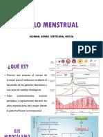 Ciclo Menstrual Final