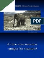 Presentación-Mamut-lanudo