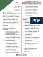 cozumlu-test-yonerge.pdf