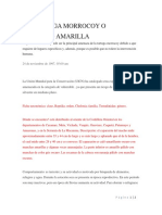 LA TORTUGA MORROCOY O MORROCO AMARILLA.docx