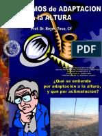 15.00 Hs Dr Reyes Toso (Mecanismos de Adaptacion a La Altura)
