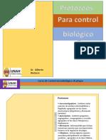 Protozoos y Microsporidios CB