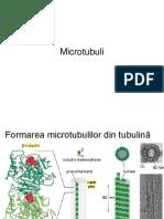 2microtubuli