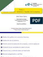 Analisis financier solvencia y liquidez de la empresa.pdf
