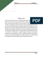 Informe Patología