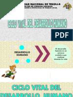 Diapositivas - Ciclo Vital - Final.