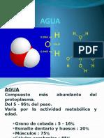 2.- Agua acidos y bases.pptx