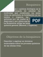 3.- Bioenergética.pptx