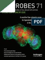Bp71 Full Issue