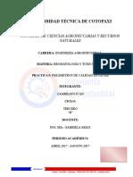 Bormatologia Practica 7 Proteina