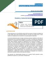 Monografia Neurosicoeducacion Ana.carina.melfa