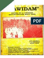 MAWIDAM Historia de la Comunidad Mapuche.pdf