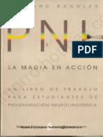 Richard Bandler - La Magia en Accion - PNL.