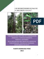 Proyecto- Reforestacion San Matias