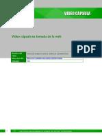 Sem 6 Video capsula web (1).docx
