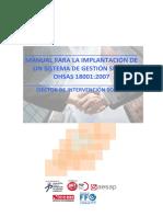 Manual Implementacion Ohsas