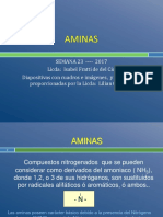 23 Aminas 2017-Ifddc