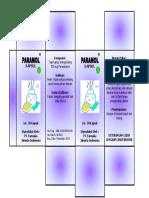 PARAMOL.docx