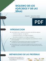 Metabolismo de Los Aminoácidos y de Las Proteínas (1)[1]