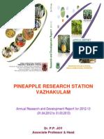 PRSVKM AR2012-13