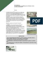 35.- Piedra pizarra.pdf