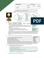 Examen Ciencias Naturales Bilingue