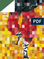 Programa Fmi 2017