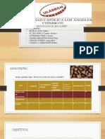 Produccion de Chocolates Diaposss