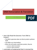 Transkripsi DNA