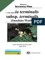 Acacia Terminalis Terminalis