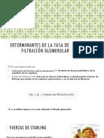 Determinantes de La Tasa de Filtración Glomerular