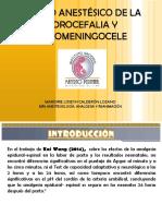 Hidrocefalia y Mmg