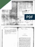 Coseriu. Lengua funcional.pdf