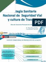 327387176-Estrategia-Sanitaria-de-Seguridad-Vial-y-Cultura-de-Transito.pdf