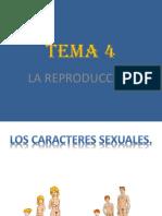 conocimientodelmedio-101121144449-phpapp01