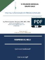 Present Proy Agiles vs Tradic IV Reunion GALS Julio 2017