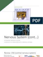nervous system lesson ppt