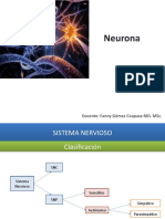01 Neurona y Neurotransmisores