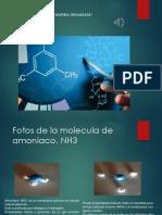 GarnicaMiranda_Carlos_M14S1_materia organizada.pptx