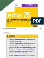 Tema 25 - Tecnología del pretensado.pptx