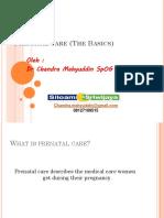Prenatal Care (the Basics)
