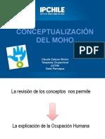 Conceptualizacion Del Moh (3)