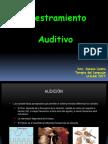 Adiestramiento Auditivo.pptx