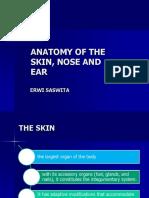 Anatomi kulit, hidung dan telinga erwi (adrian erindra's conflicted copy 2014-02-07) (irwan danon's conflicted copy 2014-03-23).ppt