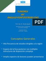 tumores del apc actualización neuro 2011 sgarbi.pdf