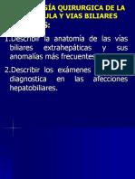 26-27patologia Vias Biliares