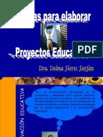 pautas-para-elaborar-el-proyecto-1232222950060667-1.ppt