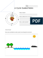 carbon cycle guided notes - google docs