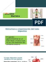 Sindrome Diarreico Agudo y Cronico